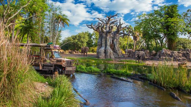 kilimanjaro-safaris-gallery00.jpg