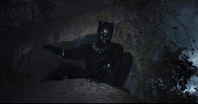 blackpanther596d2f1b1baf0.jpg
